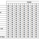 Kaspersky et six autres logiciels anti-virus sont en tête du classement